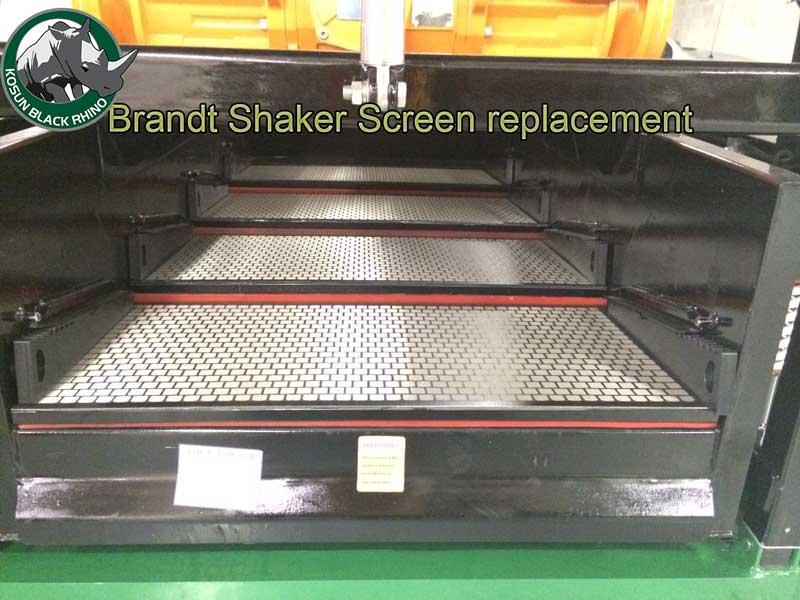 Brandt Shaker Screen